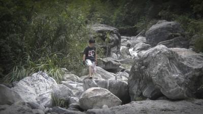 溪邊亂撿蟾蜍石 名醫父子渾身爬黑疣…助理化驗成分意外弄瞎眼