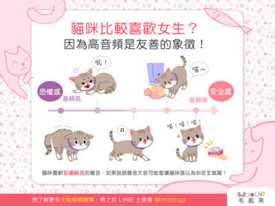 貓咪比較喜歡女生? 「重女輕男」原因...跟聲音有關啦