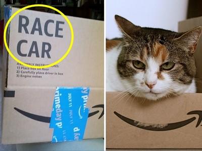 奇怪我沒買賽車啊?亞馬遜紙箱暗藏玄機 網:貓奴公司做得好!
