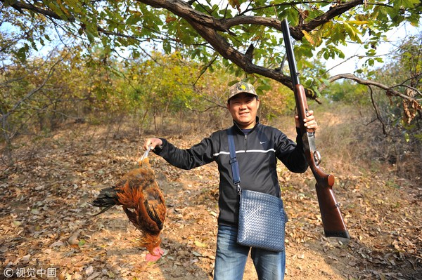 ▲�猎枪,猎人,公鸡,打猎。(图/CFP)