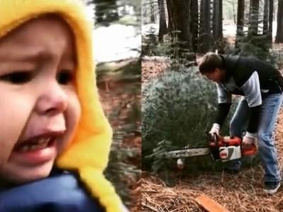 聖誕樹是爸爸鋸來的!見父拖「樹屍」回家 男童崩潰大哭