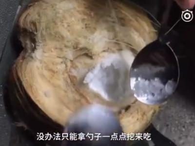 瞎!椰子快遞「海南島→東北長春」 一驗貨變椰奶冰沙啦