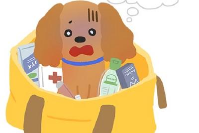 常把毛孩放在隨身包裡? 「5大致命物」對狗狗hen危險!