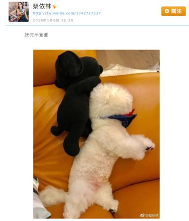 ▲▼蔡依林鉛筆腿原來靠愛犬養成!(圖/翻攝自蔡依林IG、微博)