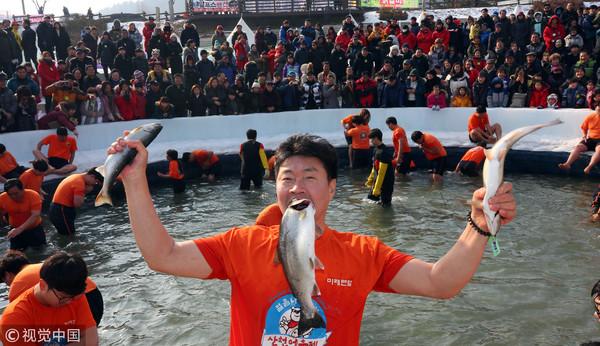 ▲▼華川山川魚慶典。(圖/CFP)