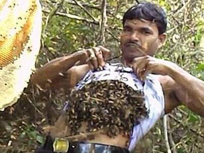 「蜜蜂灌滿身」狠螫300口!印度養蜂人沒感覺:喝杯熱茶就康復