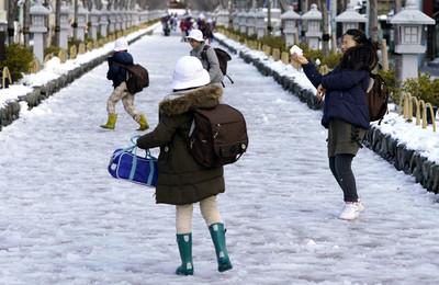 賞雪變賞楓!北海道創至今未下初雪