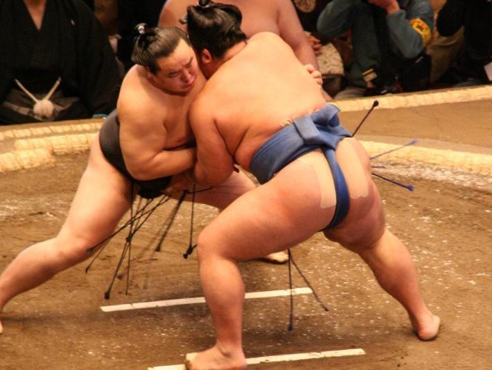 ▲▼相撲(圖/翻攝自Wikipedia)