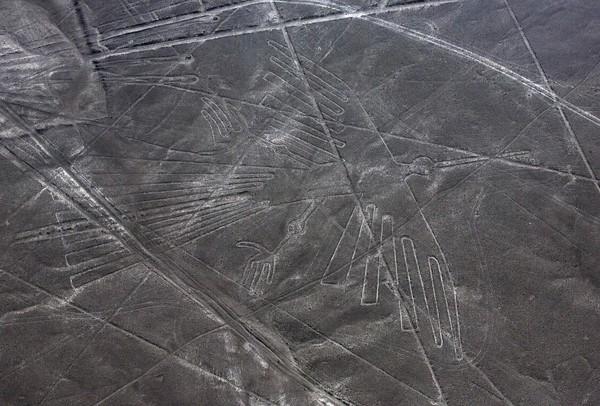 秘鲁又发现50幅纳斯卡地画 线条复杂程度划分叁世代