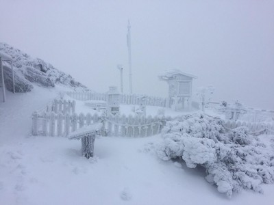 冷氣團強襲!週日合歡山、玉山降雪機率高