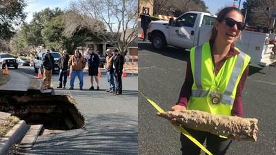 碎片比手臂粗!12公尺壯麗「鐘乳石寶穴」一場馬路崩塌全曝光