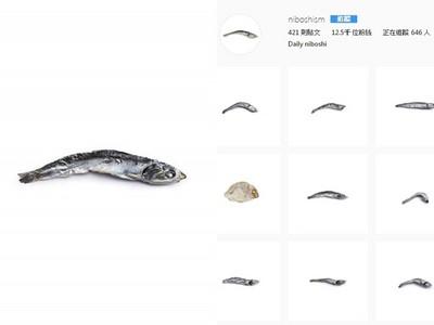 「421條小魚乾」療癒上萬人!日本謎之IG,追蹤數超越網美