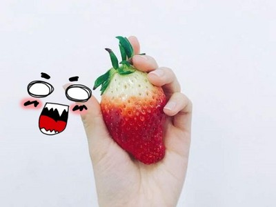 草莓比手掌大!韓國超商開賣「一盒只能裝兩顆」,這是什麼巫術