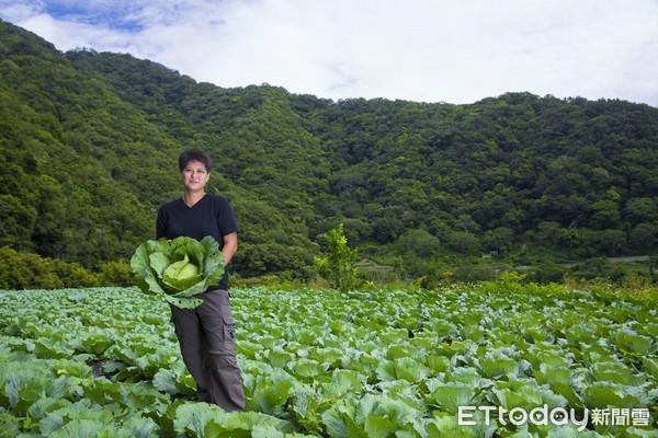 花蓮、宜蘭實際耕作者加入農保 認定作業要點上路