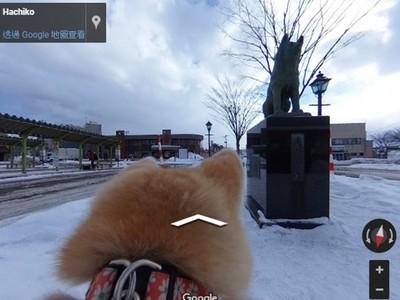 跟著毛絨絨背影走!「秋田犬視角」谷哥街景 帶你去牠的家鄉玩