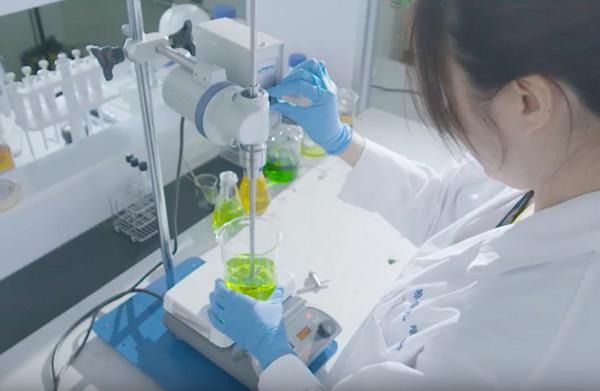 ▲ 小分子褐藻醣膠研究。(圖/台灣褐藻醣膠發展學會提供 )
