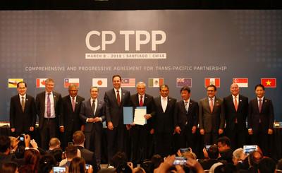 越南下月批准CPTPP 台灣卡關立法院