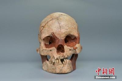 廣西發現1.6萬年前人類頭骨化石