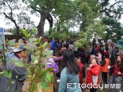 東林管處縱谷贈苗 3千苗木被索空