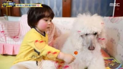 韓童「把自己當狗」天天舔地板 奇葩爸:這樣就有人打掃啦!