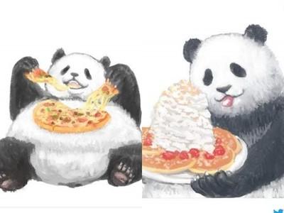 深夜別看「熊貓消夜歪理」!煎餃裡有很多蔬菜就跟沙拉一樣