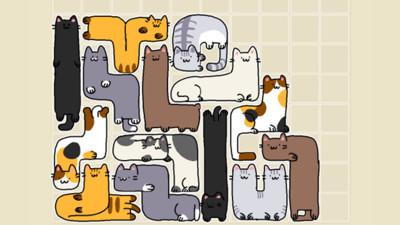 「俄羅斯喵塊」神可愛插圖 欸...等等,這貓怎麼有兩個頭啊!