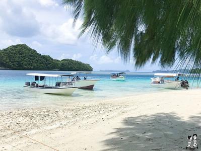 黨產會帛琉考察竟成觀光行程?