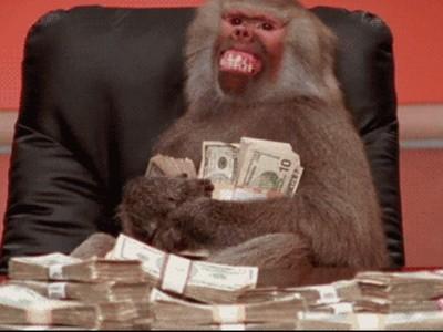 猴子經濟學研究:當牠們學會用錢 接著就是買春、賭博