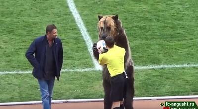 工讀生出來!俄足聯賽請「活生生棕熊」開球秀 傳為世界盃預演