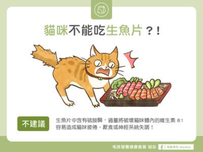 能餵喵喵吃「生魚片」嗎? 專家:NO!後果超可怕der~