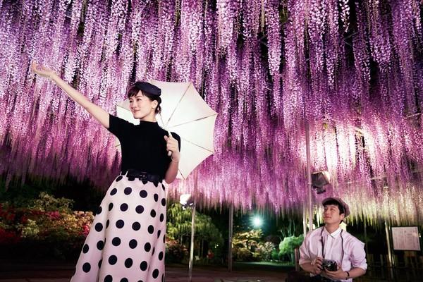 ▲▼《今夜在浪漫劇場與妳相遇》坂口健太郎、綾瀨遙和北村一輝。(圖/采昌提供)