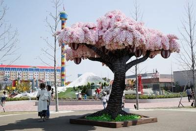 春季準備朝聖世界唯一樂高櫻花樹