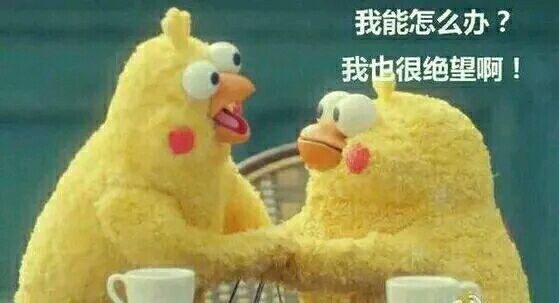 大檸檬用圖(圖/小雞梗圖)