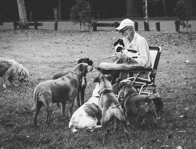 10個讓人「對世界重拾希望」的小故事 狗狗果然是最棒的生物