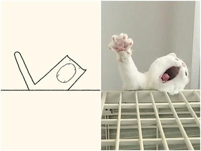 「犯蠢貓插圖」被唾棄 對比喵咪原照一看....精髓你還抓不到
