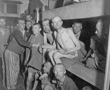 集中營旁樹林「藏滿衣服」助逃跑 看見殘暴歷史下的溫暖人性