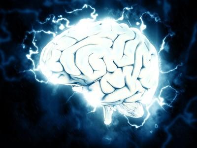 成人神經元仍會再生?科學家觀察屍體大腦:有細胞分裂跡象