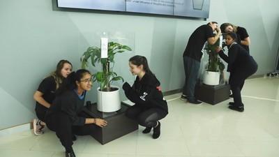 言語霸凌多可怕?IKEA用植物做唱衰實驗,30天後結果好駭人