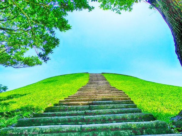羅東出現通往天國階梯!運動公園「望天丘」春意盎然