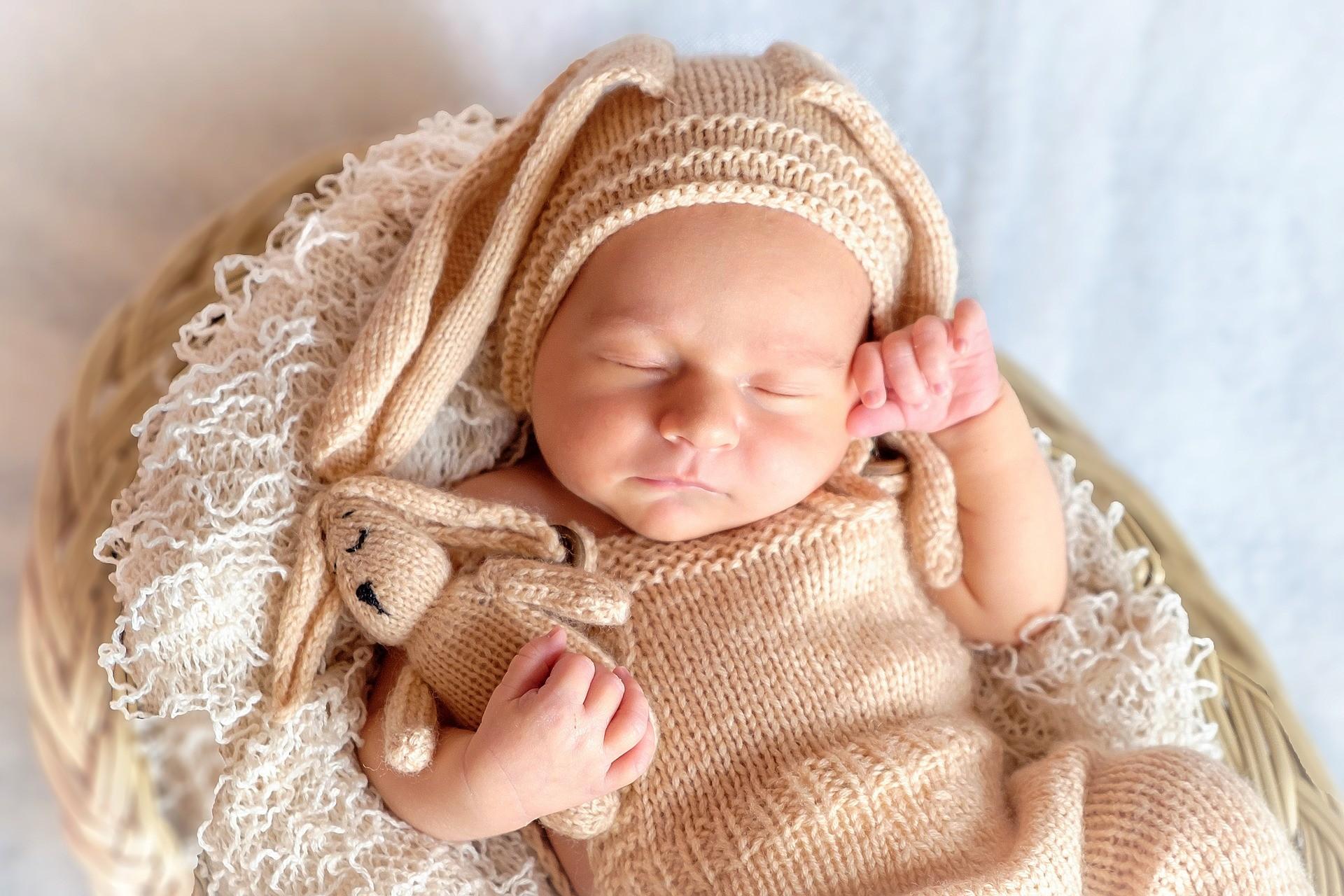 ▲睡眠,午覺,打盹,熬夜,駕駛,工作,筆電,辦公,在家工作,嬰兒,曬太陽。(圖/翻攝自pixabay)