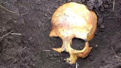 後院挖出死人骨頭!妻子淡定回:放心那是我前夫