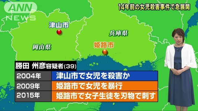 大檸檬用圖(圖/維基百科)