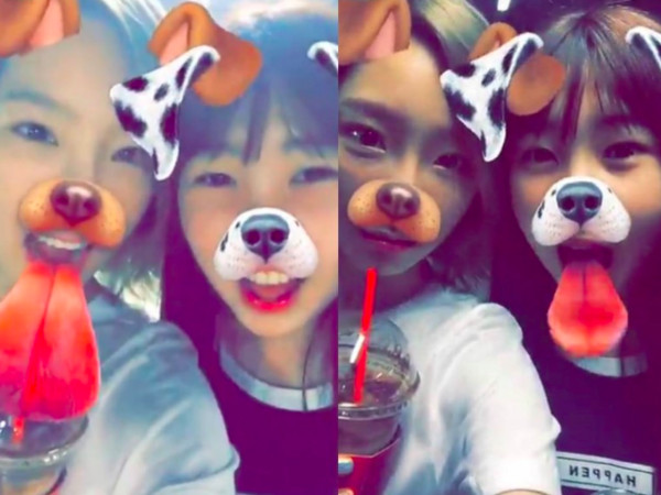 ▲▼太妍20歲親妹照片近期在韓網瘋傳。(圖/翻攝自韓網)