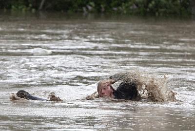 即/印尼巴布亞省洪水爆發!42人亡