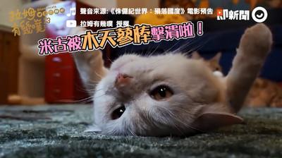 貓統治地球!貓咪偽侏羅紀預告片