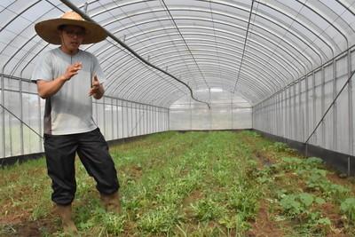 牛津碩士陳韋宇回台種有機歐洲生菜