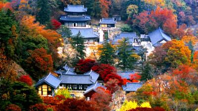 「世界文化遺產」名單出爐!南韓七大古剎入選 朝鮮佛教文化之美