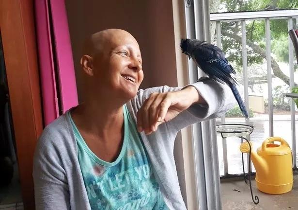 這只被她救活的小鳥,三年後給了她戰勝疾病的精神力量