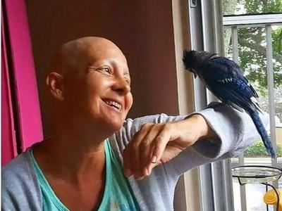 幼鳥摔下樹奄奄一息!癌婦救活養大牠,三年後病情奇蹟似康復