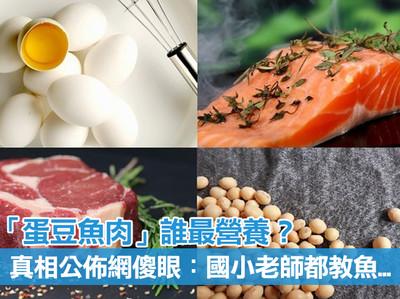 「蛋豆魚肉」誰最營養?真相公佈網傻眼:國小老師都教魚...
